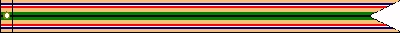 Southwest Asia Service Ribbon #356