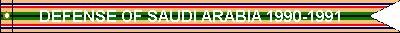 Southwest Asia Service (ribbon #356)